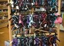 soft dog harnesses