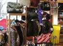 pet designer beds